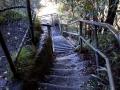 katoomba falls balade escalier de la mort