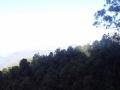 panorama scenic railway