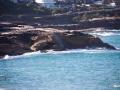 bronte beach 2