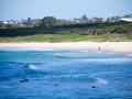 maroubra beach 4