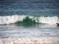 surfeur bord de mer manly 2