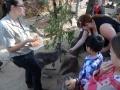 Wildlife Sydney Zoo Kangourou et carole 2