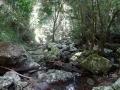 paysage cailloux kondalilla falls