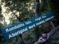 signification kondalilla falls kondalilla falls