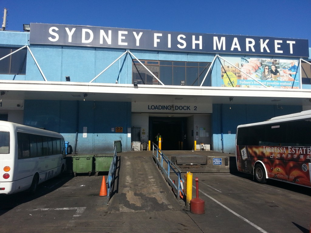 4-sydney fish market