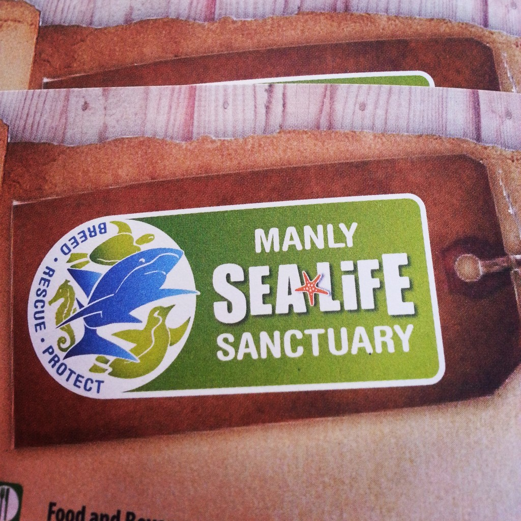 5-manly sealife sanctuary