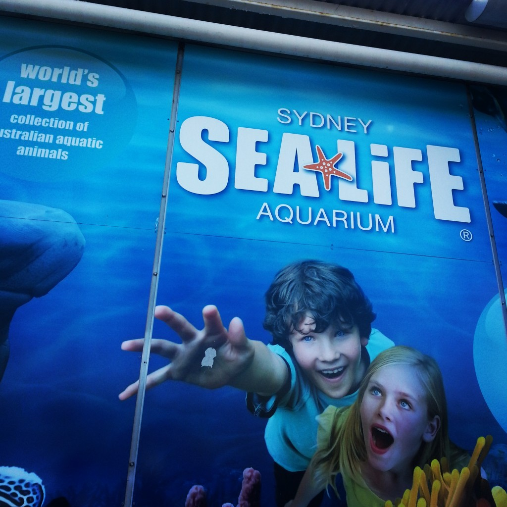 7-sealife aquarium