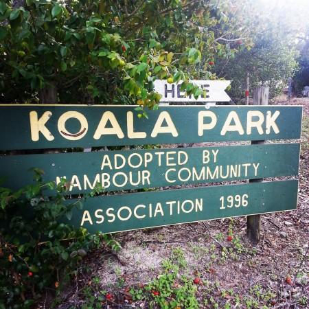 3-déjeuner en amoureux koala park