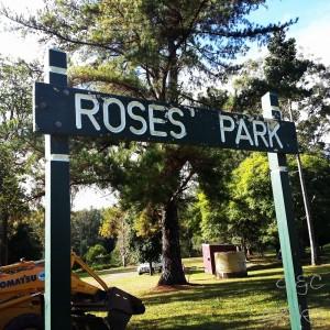 5- roses park