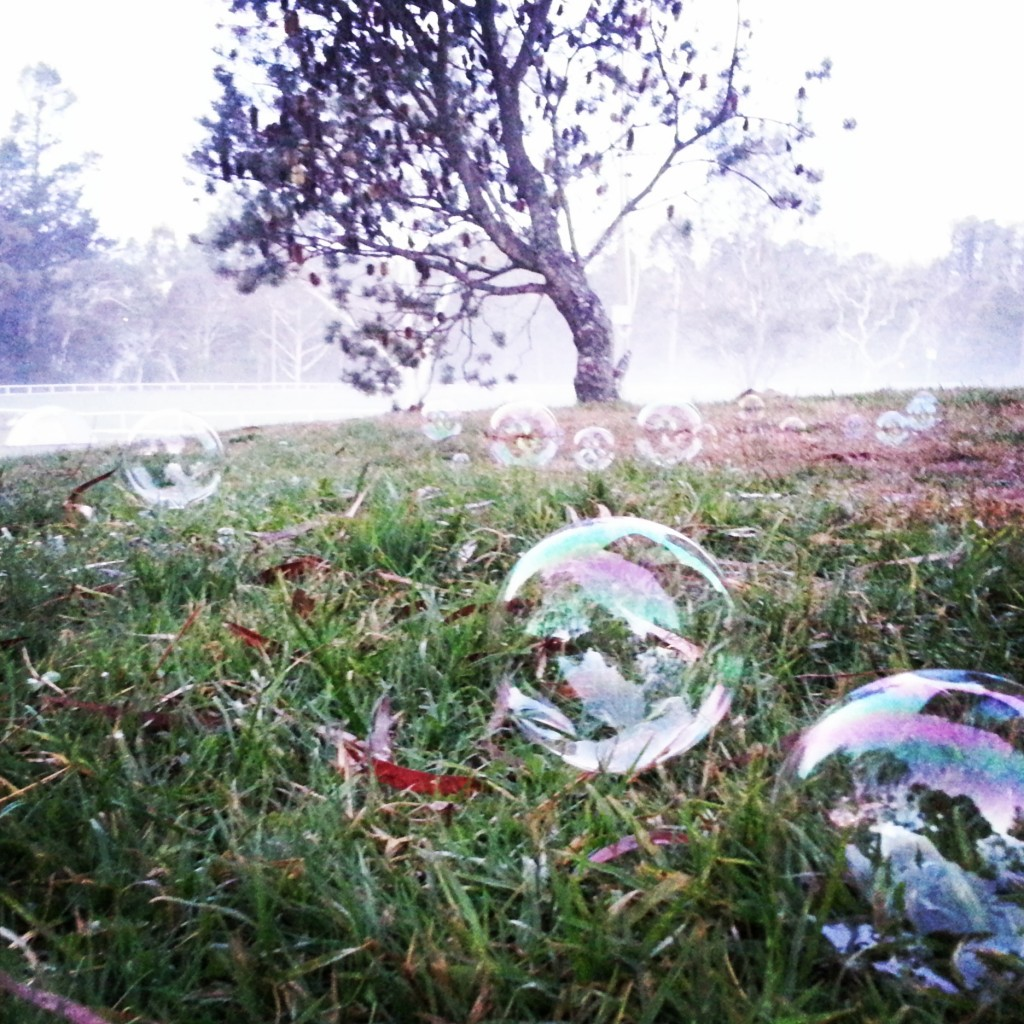6-jardin de bulles
