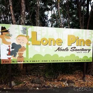 7- lone pine koala