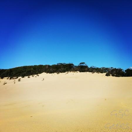 Après une petite marche de 600m à travers la forêt, on arrive sur cette gigantesque dune de sable