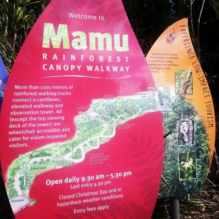5-mamu rainforest canopy walkway