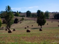 paysage-gers-8