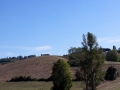 paysage-gers-9
