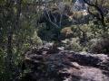 katoomba falls la forêt sur le chemin