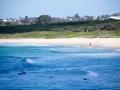 maroubra beach 4