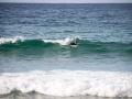 surfeur bord de mer manly 3