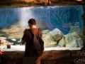 Sydney Sealife Aquarium Guillaume