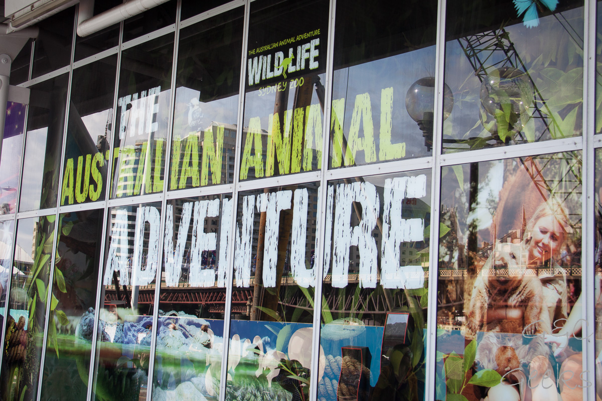 Wildlife Sydney Zoo