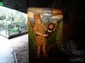 Wildlife Sydney Zoo australian adventure guillaume et carole