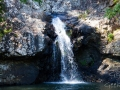 lagoon cascade kondalilla falls