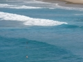 bord de mer noosa