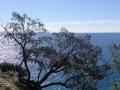 panorama chemin randonnée bord de mer noosa